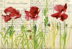 Red poppies - you could do this on a page from an old dictionary and use it as background paper for cards, scrapbooking, etc. Garden Journal, Nature Journal, Art Journal Inspiration, Painting Inspiration, Watercolor Flowers, Watercolor Paintings, Watercolors, Illustrations, Illustration Art