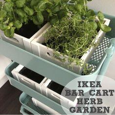 The Social Home: Pinterest Challenge: Bar Cart Herb Garden