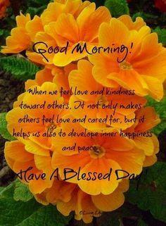 Good morning, everyone!