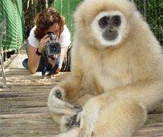 Monkeyland Plettenberg Bay | South Africa