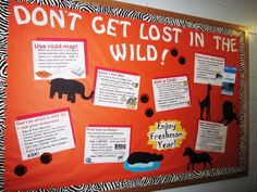 Don't Get Lost In The Wild - Tips to Survive Freshman Year- Bulletin Board