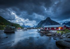 Reine by Stefano Termanini on 500px