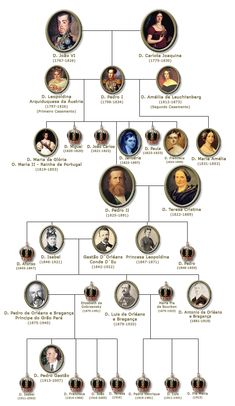 História Total: Arvore Geneologica da Familia Real Brasileira - The little thins - Event planning, Personal celebration, Hosting occasions Portuguese Royal Family, Learn Portuguese, Triple Alliance, Royal Family Trees, The Proclamation, History Teachers, Family History, Event Planning, Brazil