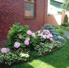 70 Fresh Front Yard and Backyard Landscaping Ideas This Season To Inspire You - Alles über den Garten Hydrangea Landscaping, Hydrangea Garden, Mulch Landscaping, Courtyard Landscaping, Hydrangeas, Pink Hydrangea, Landscaping With Flowers, Low Maintenance Landscaping, Purple Flowers
