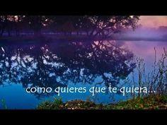 Como quieres que te quiera - Rosario Flores - HD Lyrics on Screen