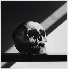 Skull / Black and White Photography by Robert Mapplethorpe Patti Smith, Memento Mori, Still Life Photography, Art Photography, Artistic Photography, Robert Mapplethorpe Photography, Tv Movie, Still Life Images, Damien Hirst