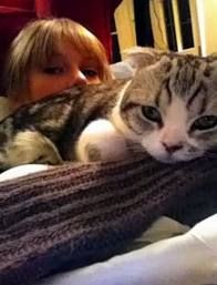 Taylor Swift and her cat, Meredith.