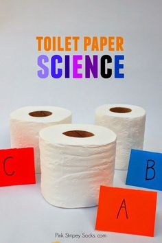 Preschool STEM Science Activity- toilet paper science