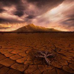 incredible, dunse, sandstorm, california, eureka valley, lone, sagebrush, cracked, desert