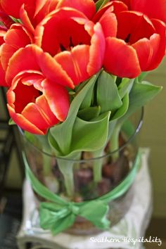 Beautiful idea from Southern Hospitality-Pay it forward with springtime bulbs!