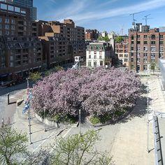 Esplanade du Palais des Congrès de Montréal #gardens #LandscapeArchitecture