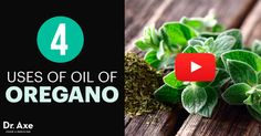 I want to share with you the many benefits of oregano oil and the many oregano oil uses. Found in the Mediterranean, oregano oil has been used for over 2,500years. A member of the mint family (Labiatae), medicinal grade oregano is distilled to extract theessential oil and preserve its healing compounds. In fact, …