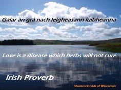 Galar an gra nach leigheasann luibheanna  Love is a disease which herbs will not cure. Irish proverb #IrishProverb #AsGaeilge #Gaeilge #MKEIrish #IrishMKE