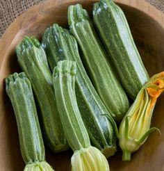 Zucchini Costata Romanesco D2053A (Green) 50 Heirloom Seeds by David's Garden Seeds