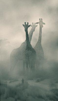 Mystery behind Dawid Planeta's illustrations Fantasy World, Fantasy Art, Depression Art, Giant Animals, Tier Fotos, Fantasy Landscape, Surreal Art, Belle Photo, Animal Drawings