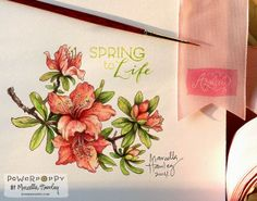 "This is the inspiration behind the stamp set ""Azaleas"" by Marcella Hawley!  Awesome artwork!"