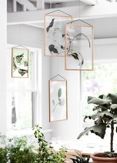 The Floating Leaves series is the result of a collaboration between 3 Copenhagen-based design companies, Paper Collective, Moebe and Norm Architects, comes a brand new series of transparent art prints created for the iconic Moebe frames. Leaf Projects, Floating, Danish Design, Scandinavian Design, Interior Inspiration, Room Inspiration, Gallery Wall, Room Decor, Wall Decor