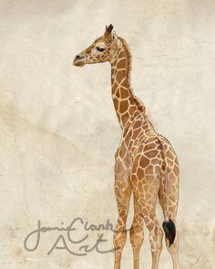 Baby Giraffe Print FREE Shipping by JamieClarkArt on Etsy
