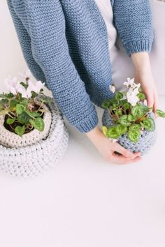 Colorful Plants, Small Plants, Make Happy, Are You Happy, Gardening Magazines, Gardening Tips, Flowering Kale, Lose A Stone, Fall Clean Up