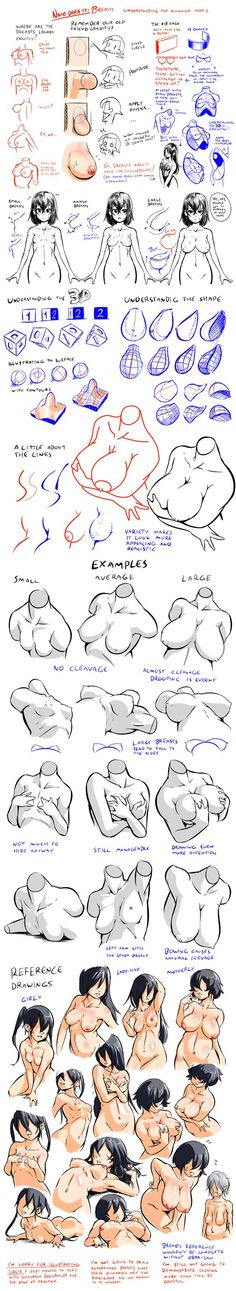 Breasts - Understanding the Dynamics 2 by Nsio on deviantART…