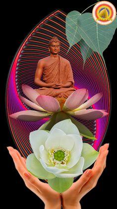 Zen, Spirituality, Inspiration, World, Biblical Inspiration, Spiritual, The World, Motivation, Earth
