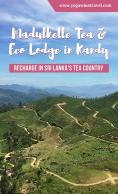 Yogawinetravel.com: Madulkelle Tea and Eco Lodge in Kandy - Recharge in Sri Lanka's Tea Country