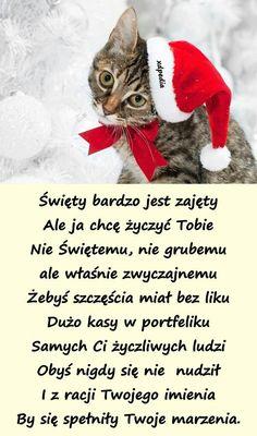 Winter Christmas, Christmas Decorations, Humor, Funny, Christmas, Humour, Funny Photos, Funny Parenting, Funny Humor
