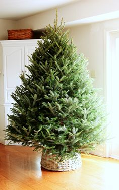 Christmas is on the way, This year I'm going to skip the Christmas tree skirt and put my holiday tree in a fun, unique container! Here are a few Stylish DIY Christmas Tree Container ideas I collect… Tree Collar Christmas, Christmas Tree In Basket, Christmas Tree Base, Noel Christmas, Winter Christmas, Upside Down Christmas Tree, Diy Christmas Tree Skirt, Burlap Christmas, Magical Christmas