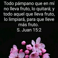 Educational Quotes, San Juan, Dios