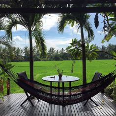 Is it a dream? No it is real! Visiting a dear friend @elaineweeks for a nice lunch and chilling out on the pool.... #ubud#bali#indonesia#travel#leisure#instago#instatravel#visitubud#friend#scenery#hammock#hammocklife#ig_holiday#teaveladdict#ig_travel#villainubud#travelblog#balilife#ubudlife#digitalnomad#travelbug#worldtraveler#seetheworld#nomadlife by @mayershira
