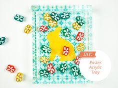 acrylic tray/box