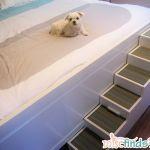 DIY Pet Stairs