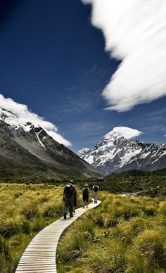 Aoraki- Mt Cook boardwalk, South. Island, new. Zealand