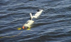 Michigan Technological University - October 17, 2013— Iver 3—a third-generation Autonomous Underwater Vehicle (AUV)—is charting new territories in the field of underwater explo...
