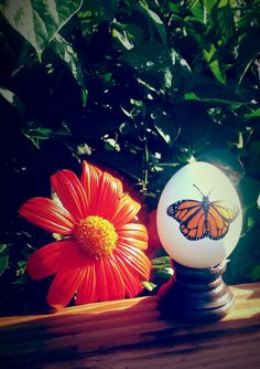 Handmade Painted Monarch Butterfly Egg. Peel off the wax seal on the bottom to release the 20+ Milkweed Seeds contained inside.  EggSpecially.com. Check us out!