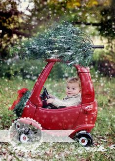 Tree on Kiddie Car Holiday Card by Sara Anne Photography