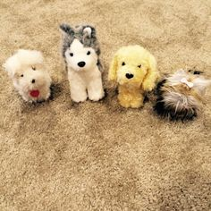 For Sale: American Girl Dogs for $17