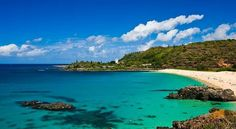 Trip_for_4_to_Hawaii!