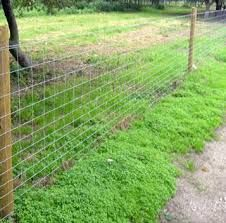 image result for dog fence