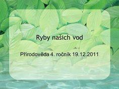 Ryby našich vod Přírodověda 4. ročník 19.12.2011.>
