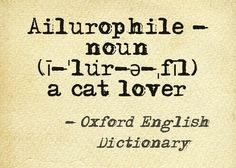 Ailurophile - noun - a cat lover #Words (created at pinstamatic.com)