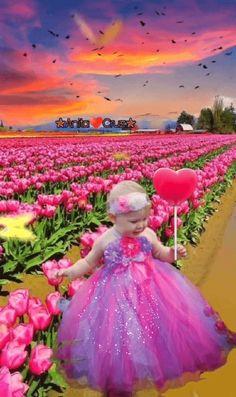 Gifs, Tulips, Ball Gowns, Cinderella, Aurora Sleeping Beauty, Flower Girl Dresses, Disney Princess, Disney Characters, Wedding Dresses