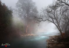 A foggy morning on the San Marcos River at Rio Vista. Photographic Prints: Photographic prints are available in two finishes – matte and glossy. Matte prints look great in all types of lighting and… Texas Wall Art, Country Wall Art, Winter Landscape, Landscape Photos, Foggy Morning, Early Morning, Rio Vista, Texas Hill Country, Photographic Prints