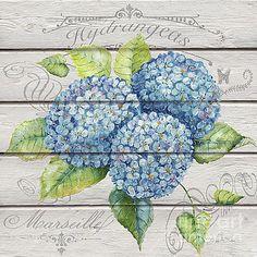 Blue Hydrangeas-JP3921 by Jean Plout