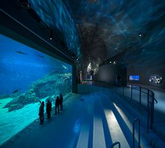 Blue Planet Aquarium, Copenhagen, Denmark by 3XN. #allgoodthings #danish #architecture spotted by @missdesignsays