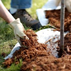 Learn how to best mulch your garden with these handy tips: http://www.bhg.com/gardening/yard/mulch/how-to-mulch/?socsrc=bhgpin070414howtomulch