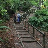 Byrne Creek Ravine Loop Trail is a mile moderately trafficked loop trail located near Burnaby, British Columbia, Canada that features a river. Thing 1, British Columbia, Garden Bridge, Trail, Hiking, Outdoor Structures, Bike, Walks, Bicycle Kick