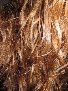 Day 28 Madeleine's hair