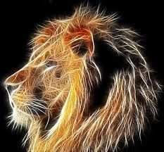 A special fractal for a close friend. She has the heart of the lion, and we will always love her. The Heart of a Lion Lion And Lioness, Leo Lion, Heart Of A Lion, Photoshop Plugins, Photoshop Filters, Photoshop Ideas, Lion Art, Arte Pop, Fractal Art
