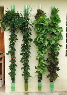 Vertical Veggie Garden looks like a great idea indoor bottle tower garden recycle plastic bottles! #recycle #gardening
